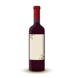 cartoon wine bottletransparent glass label vector image