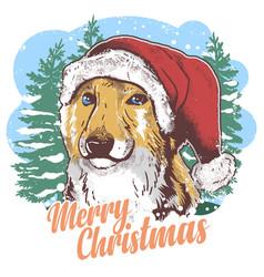 dog christmas santa claus hat vector image