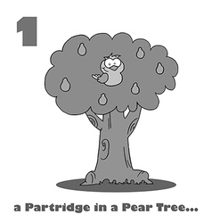 Partridge in a pear tree cartoon vector