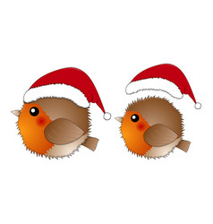 red robin bird santa claus isolated on white vector image