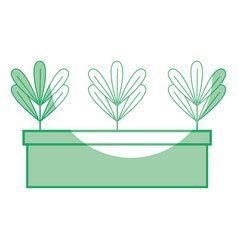 Silhouette ecological plants with leaves inside vector