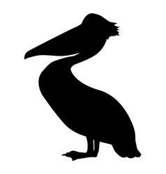 Silhouette of pelican vector