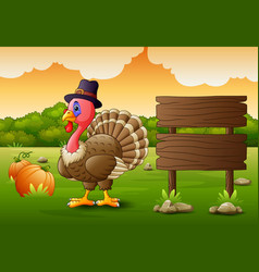 thanksgiving day background with turkey bird and p vector image