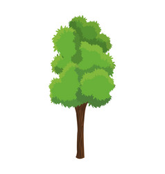Tree plant natural ecology growth vector