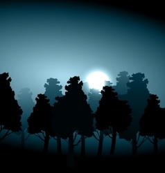Valley middle forest in moonlight fog vector