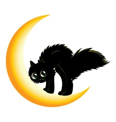 Black cat on moon2 vector image