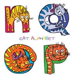 Cat alphabet n o p q vector