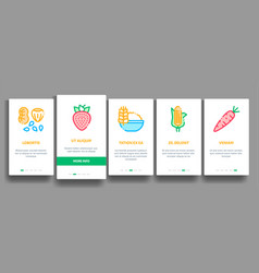 collection healthy food onboarding vector image