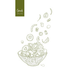 Contour drawing of greek salad and its ingredients vector