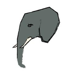 Elephant african animal vector