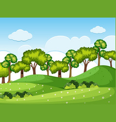 Forrest scene with trees on the hills vector