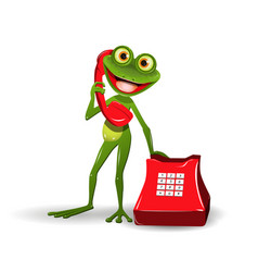 Frog with red phone vector