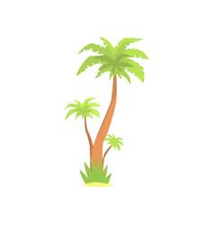 green palm tree cartoon vector image