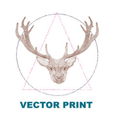 hand drawn vintage print with the deer vector image