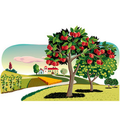 Orchard with apple trees vector