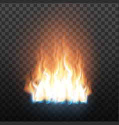 Realistic decorative flammable fire flame vector