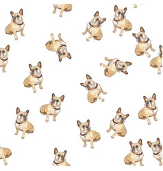 Seamless background with pugs vector
