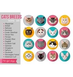 Set flat popular breeds cats icons vector