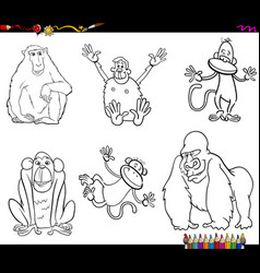 Set of monkeys animal characters color book vector