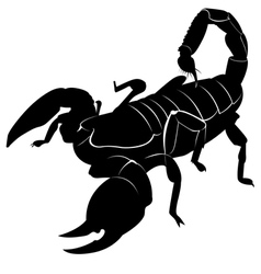 Silhouette of a scorpion vector