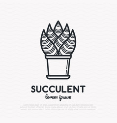 succulent in pot thin line icon vector image
