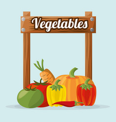 vegetables organic nature image vector image