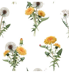 watercolor dandelion blowball pattern vector image