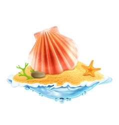 Seashell in the sand vector image