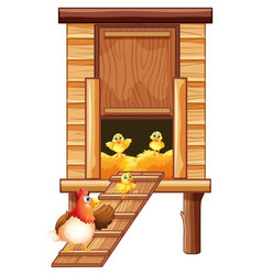 chicken coop with hen and chicks vector image vector image