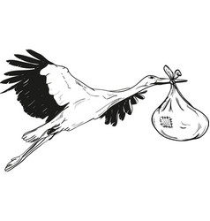 stork with baby bag vector image