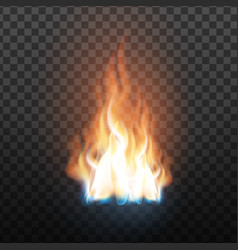 Animation stage of decorative fire flame vector