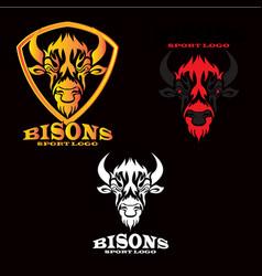 bisons sport logo vector image