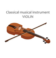 classic violin with bow of vector image