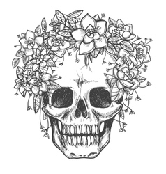 Dead skull with rose flowers sketch vector