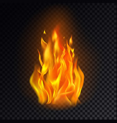 Isolated fire emoji on transparent background vector