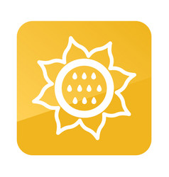 Sunflower outline icon vegetable vector