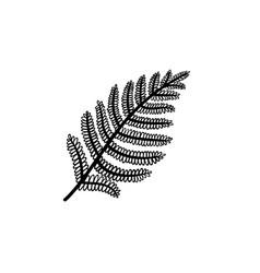 fern leaf hand drawn sketch icon vector image