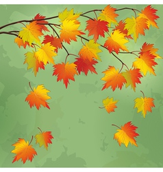 Vintage autumn background with branch of tree vector image vector image