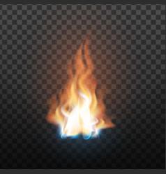 animation stage burning orange fire vector image