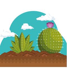 Cactus plant botany icon vector