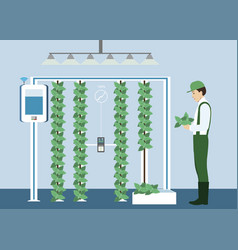 Growing plants on the field vector