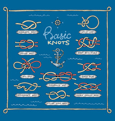 Knot marine knotty bow or nautical bowed vector