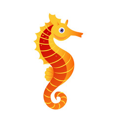 seahorse or hippocampus sea creature colorful vector image
