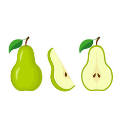 whole green pear half pear and slice vector image