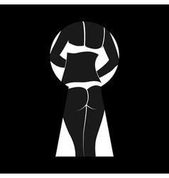 strip vector image