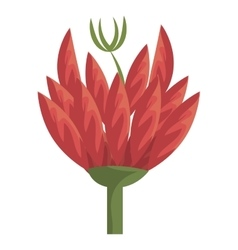 colorful red and green flower graphic vector image vector image
