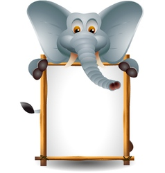 funny elephant cartoon with blank sign vector image