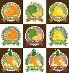 Set of various tropical fruit tag label badge vector image