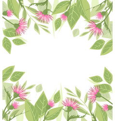thistle with green leaves vector image