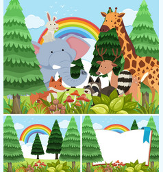 Three scenes of forest with wild animals vector